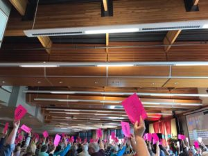 A sea of raised hands holding pink voting cards.
